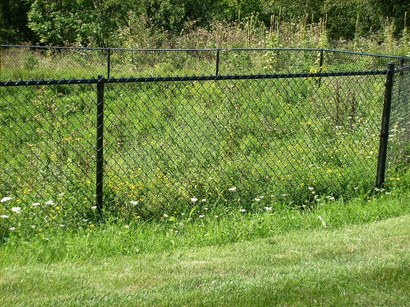 Chain Link Fencing Cranberry
