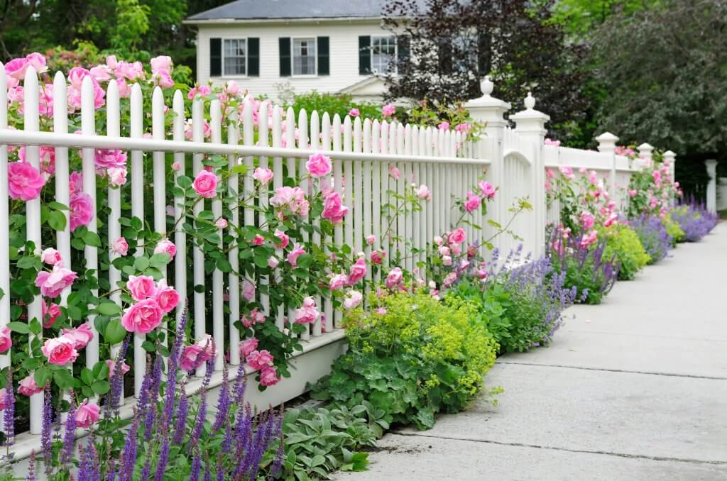 Spring Fence Installation