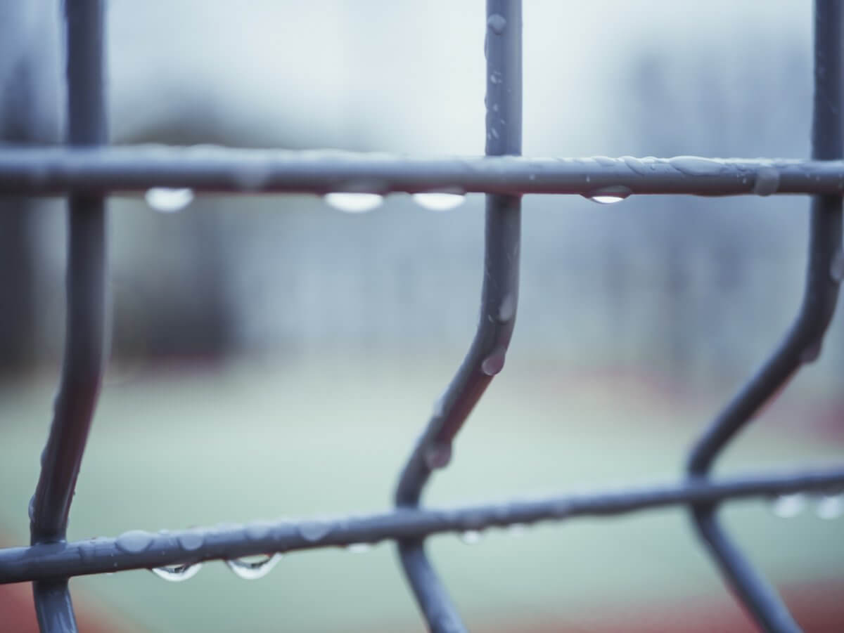 The Best Fencing for Bad Weather